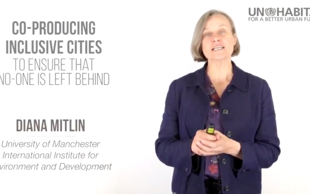 Diana Mitlin on co-producing sustainable cities