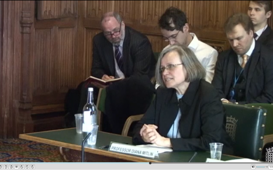 Prof Diana Mitlin presents evidence to Select Committee on overseas development assistance