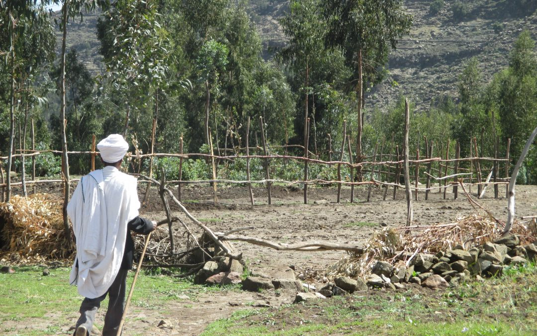 DSA2018: Land, ethnic inequality and conflict in Ethiopia's emerging new political order